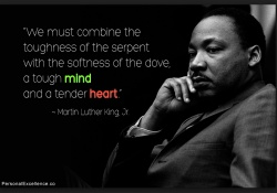 mlk-serpents-and-doves